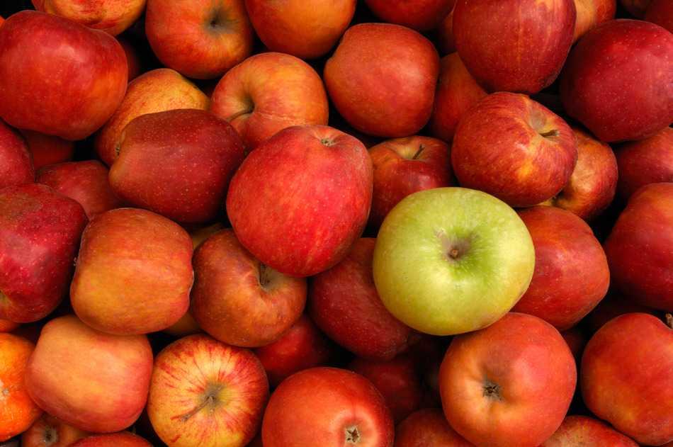 La manzana podrida