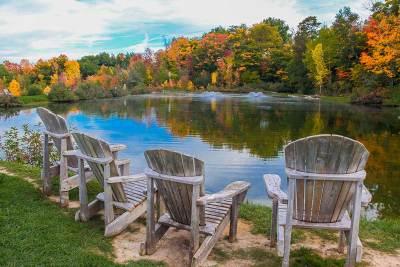 Professional Photography Landscape Park Area Ontario