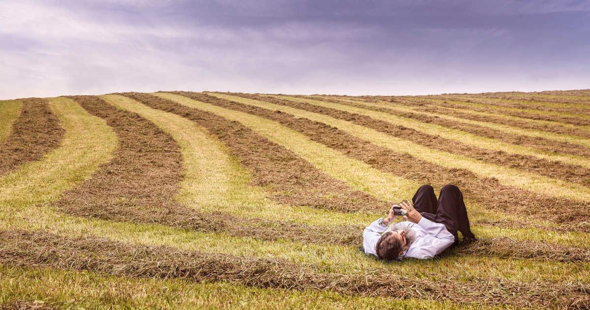 persona sdraiata in un campo