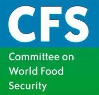 37° sessione del CFS-FAO: un passo nella giusta direzione