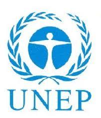 """Presentato il Rapporto UNEP sulla """"green economy"""""""