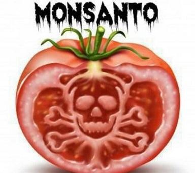 Estate amara per Monsanto