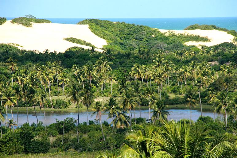 Pantanal de Pacatuba
