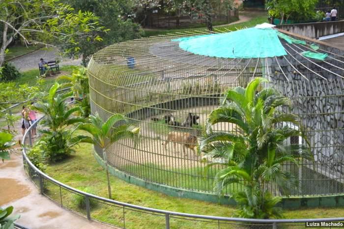 Zoológico de Aracaju