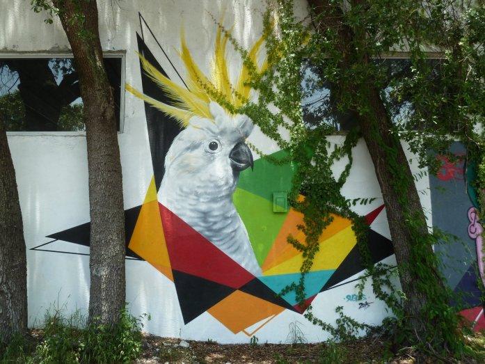 Wynwood fresque oiseau street art