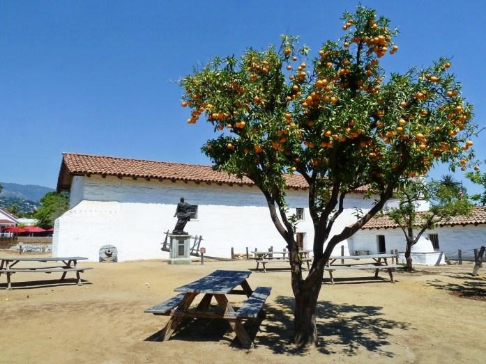 presidio de santa barbara avec un oranger