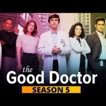 The Good Doctor (Temporadas 4 y 5) HD 720p (Mega)