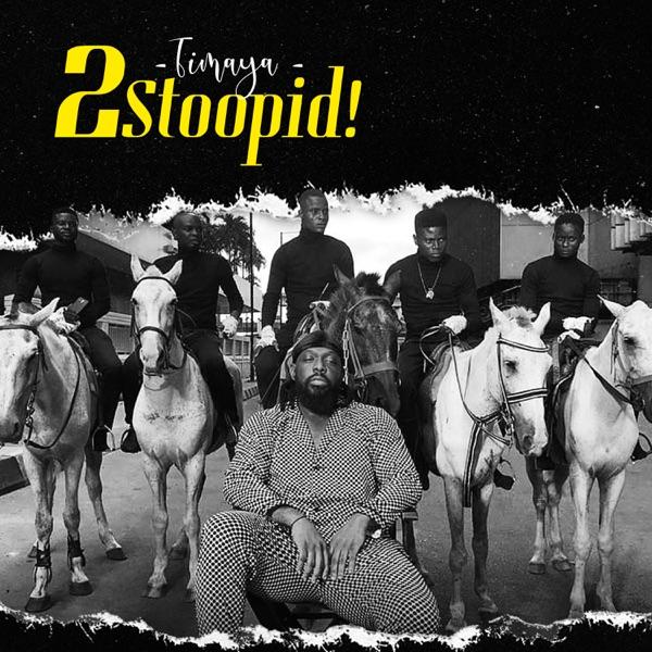 Timaya 2 Stoopid Mp3 Download Audio