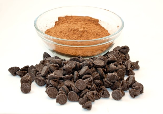 chocolate-cocoa-powder-and-chocolate-chips-for-baking_MkCMKUOu