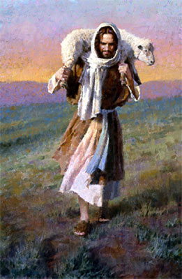 Image result for lost sheep parable