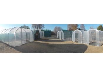 serre de jardin dolmen 330