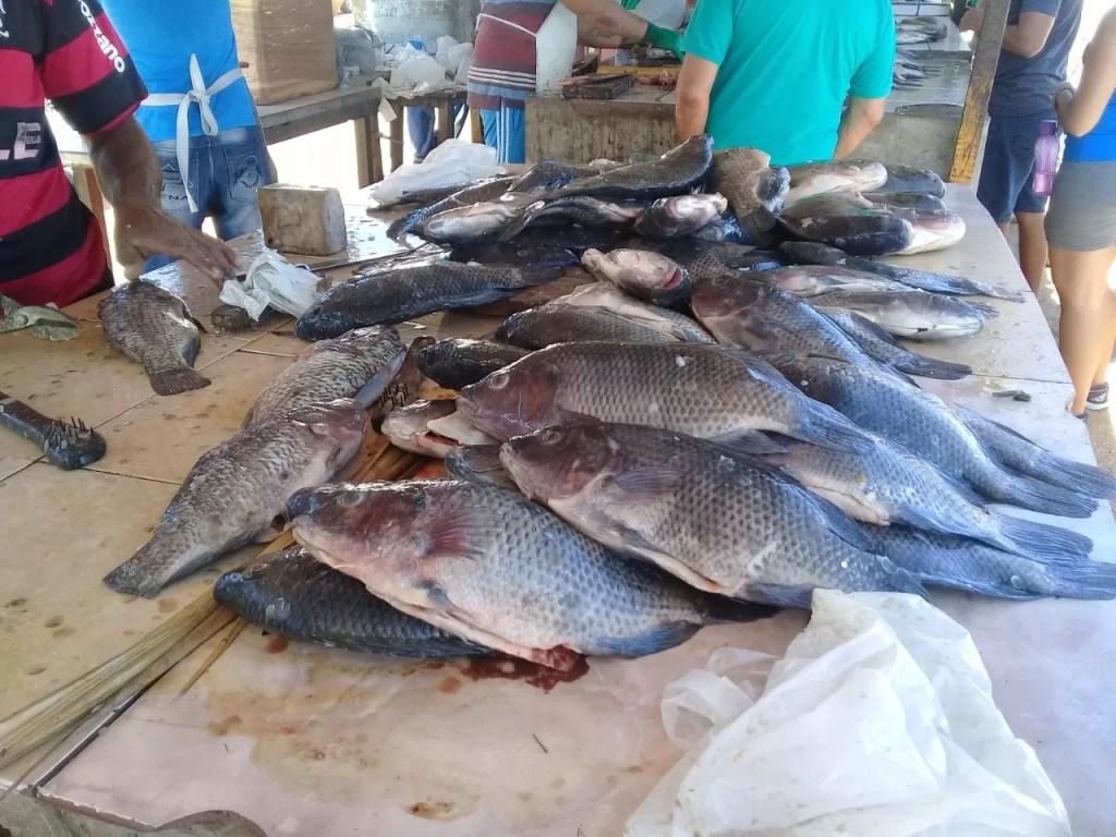Venda de peixe cai este ano, mas consumidor mantem a tradição católica