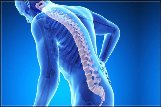 Minyak zaitun mencegah osteoporosis