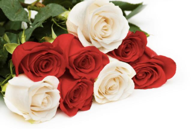 9 Bunga Cantik Berasal dari Sedotan Plastik Bekas dan Cara ... addcb4c78e