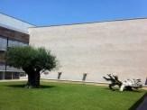 Il giardinetto interno Vagheggi