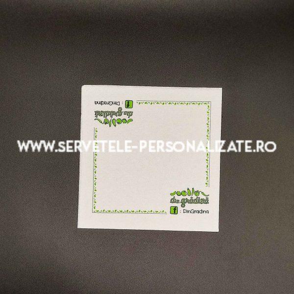 Servetele Personalizate Antibateriene Umede Simple-132617