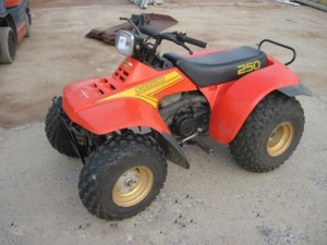 Suzuki QuadRunner LT250E LT250EF Manual