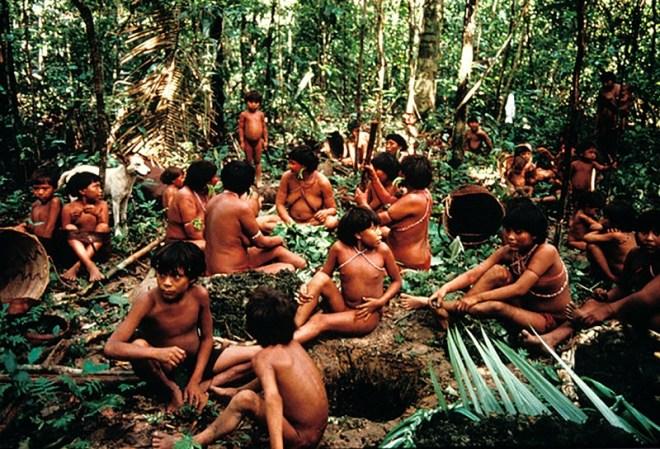Grupo de indígenas yanomami en la selva en Demini, Brasil. FIONA WATSON/SURVIVAL.