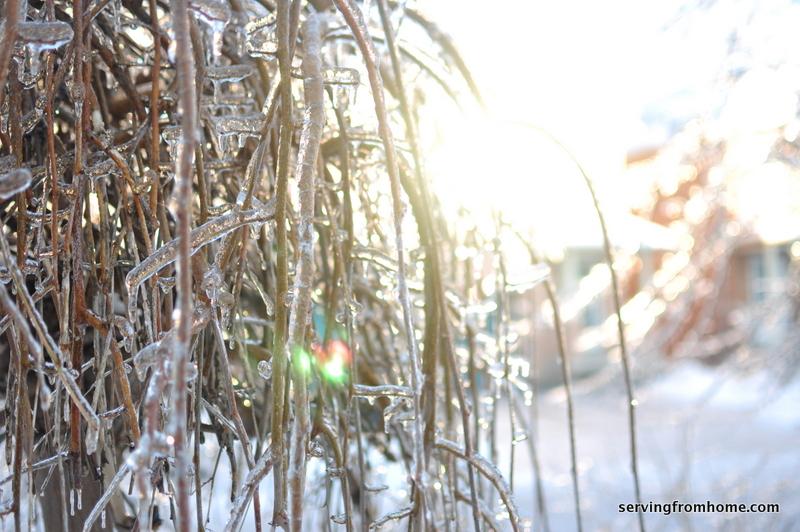 ice storm kingdom