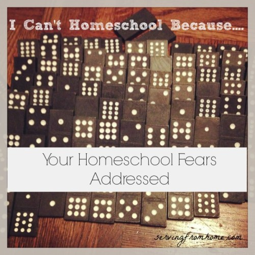 Homeschool Fears Addressed
