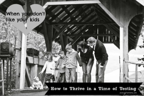 when you don't like your kids - how to thrive in a time of testing