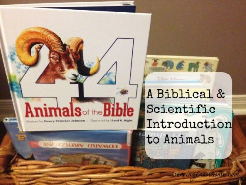 44 Animals of the Bible
