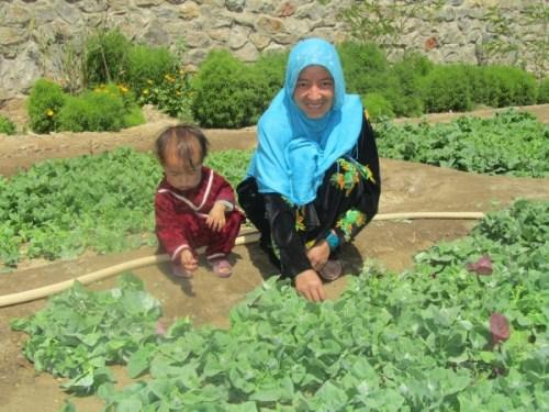 ARZU Garden Photo