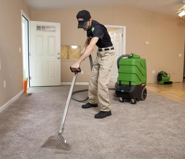 Why You Should Use Professional Carpet Cleaners Over ...