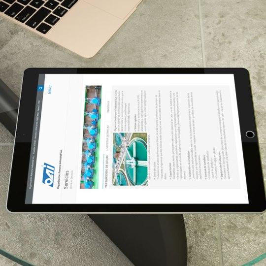 Diseño web OAISA