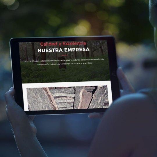 Diseño web para Molinas Argentina
