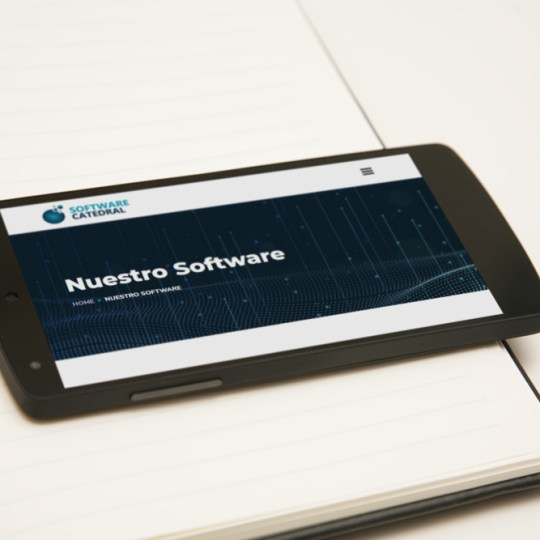 Diseño Web Software Catedral2