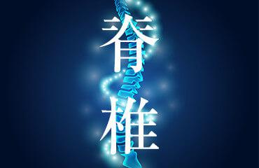 骨粗鬆症性椎体骨折の検査