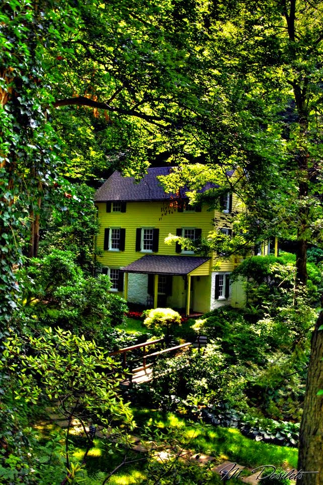 Hidden Forest House, Burlington, Vermont