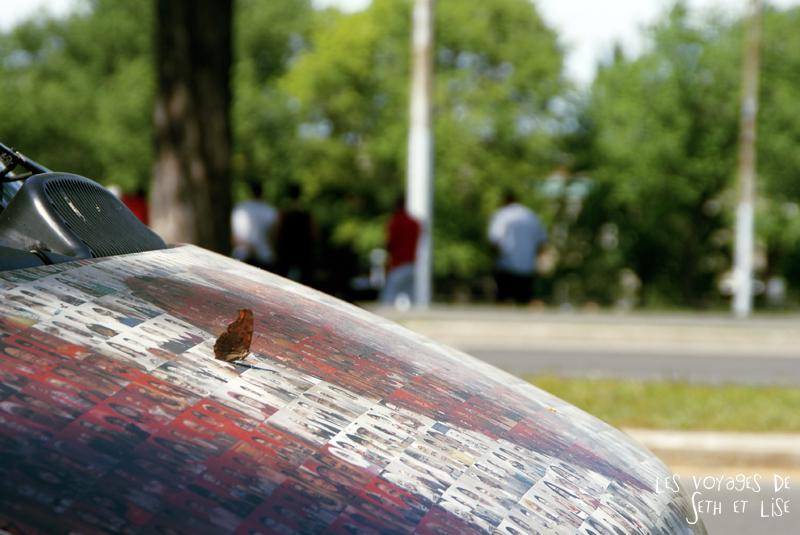 blog canada voyage montreal pvt canadian mosaic tim van horn photo project mozaic portrait papillon