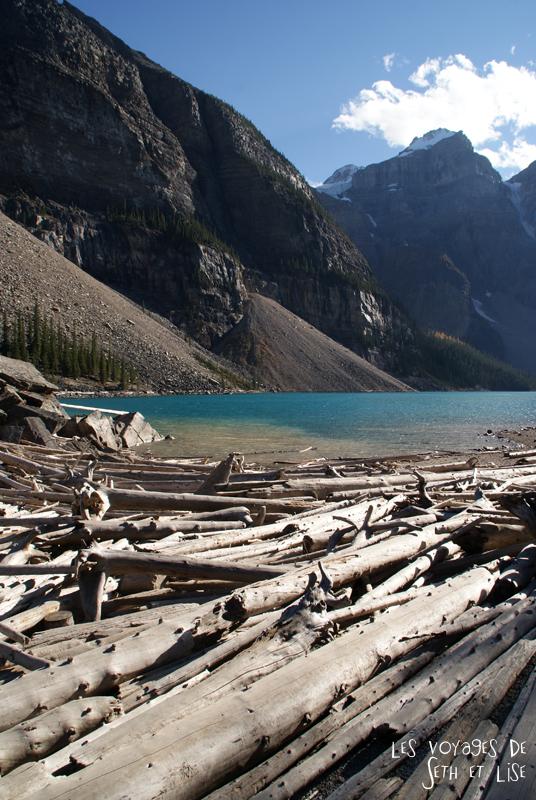 blog photogaphie pvt pvtiste canada alberta rocheuses montagne couple voyage tour du monde paysage nature lac lake moraine tronc tree