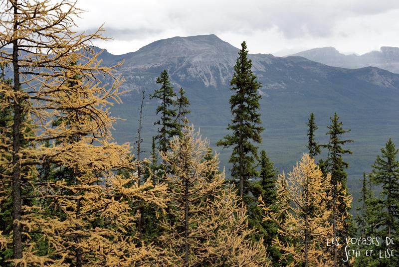 blog pvt photographie pvtiste canada alberta rocheuses rockies moutains voyage montagne couple tour du monde nature parc national lac lake sapin jaune
