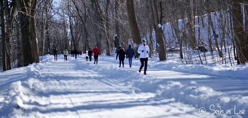 blog pvt canada voyage photographie montreal mont royal hiver neige piste ski