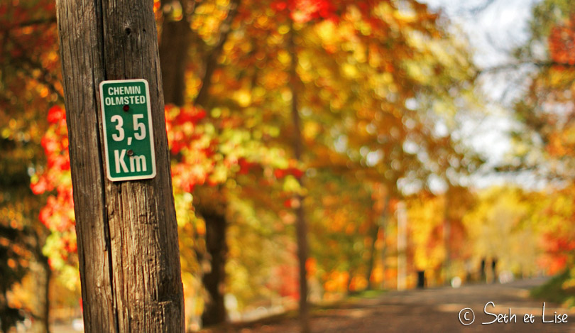 chemin olmsted mont royal montreal