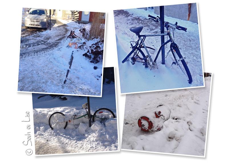 destruction winter montreal