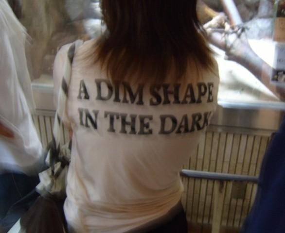 a dim shape in the dark - engrish