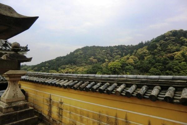Konpira-san - First Steps - 14