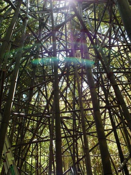 Big Bambu Preview - 6