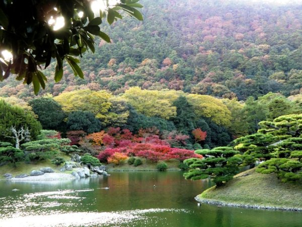 Ritsurin autumn - 2