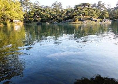 Ritsurin Garden - Late November - 10