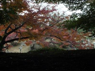 Ritsurin Garden - Late November - 22