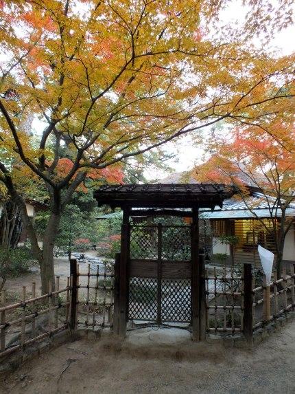 Ritsurin Garden - Late November - 41
