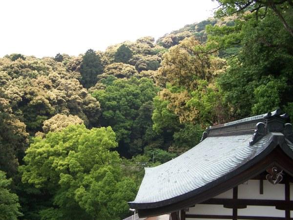 Climbing Konpira-san - Part Four - 07