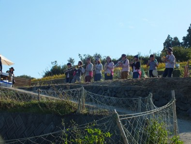 Harvest Festival and Seppuku Pistols on Teshima - 17