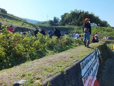 Harvest Festival and Seppuku Pistols on Teshima - 2