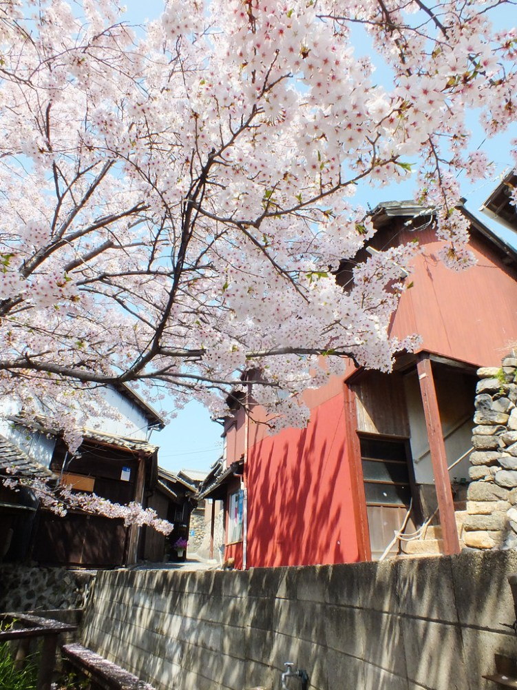 Ogijima - April 2018 - 4